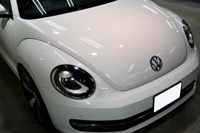 beetle-01.jpg