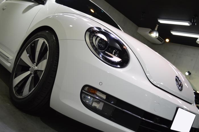 beetle-02.jpg