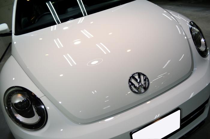 beetle-03.jpg