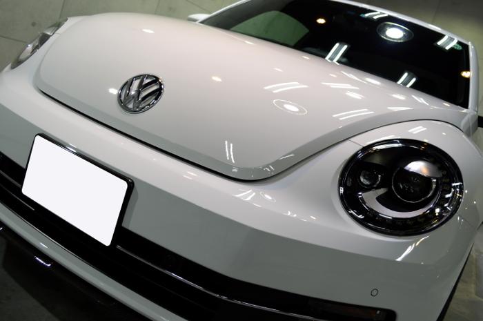 beetle-04.jpg