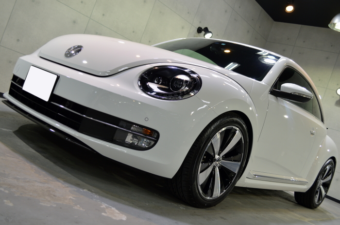 beetle-05.jpg