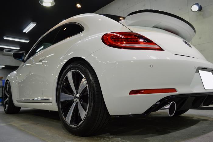 beetle-06.jpg