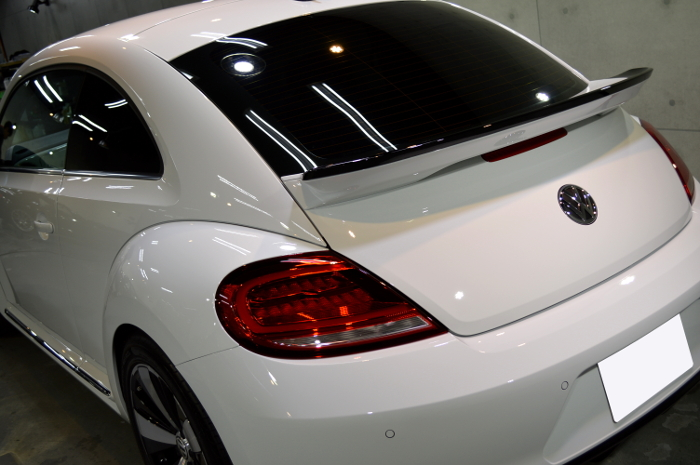 beetle-07.jpg