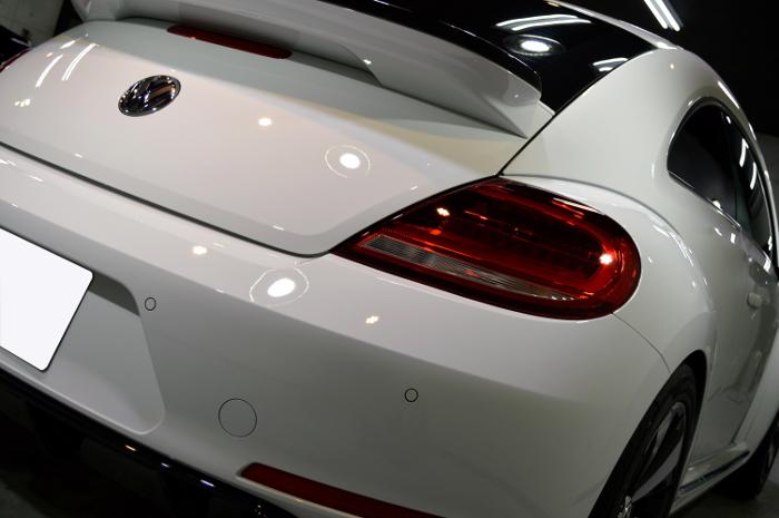beetle-08.jpg