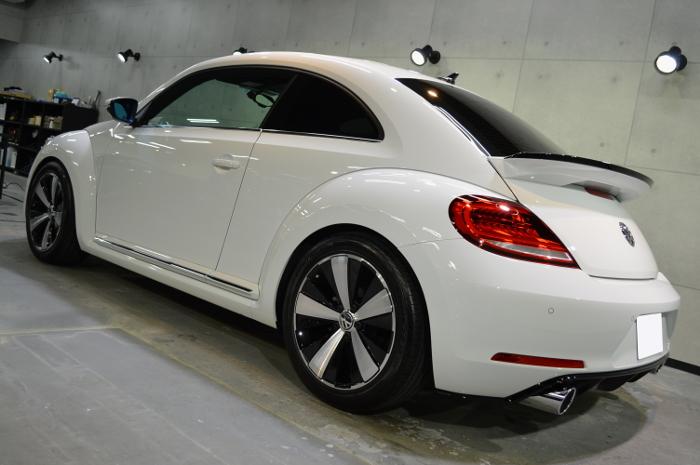 beetle-09.jpg