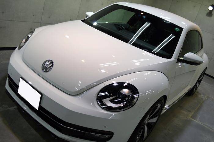 beetle-10.jpg
