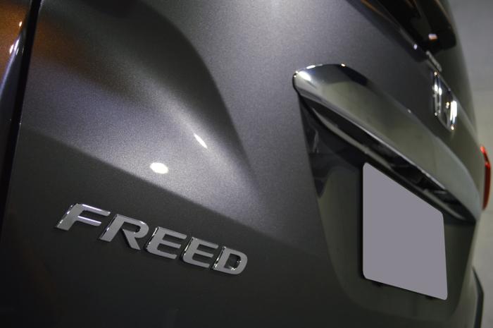 freed2-08.jpg